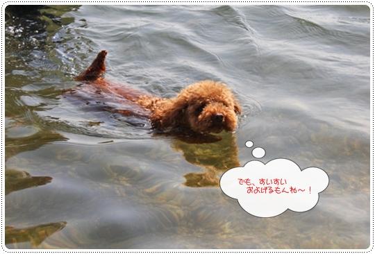 9,30琵琶湖3