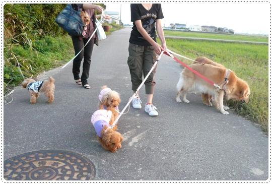 10,4お散歩11