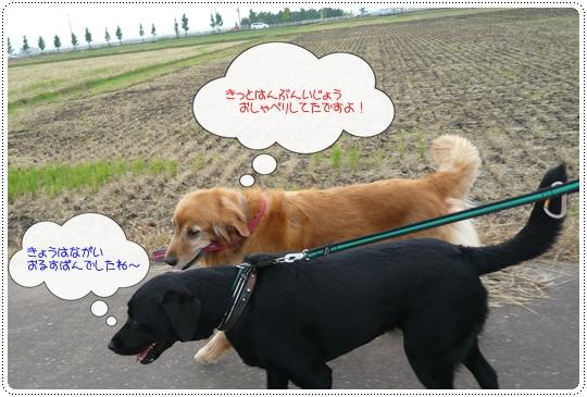 10,6お散歩5
