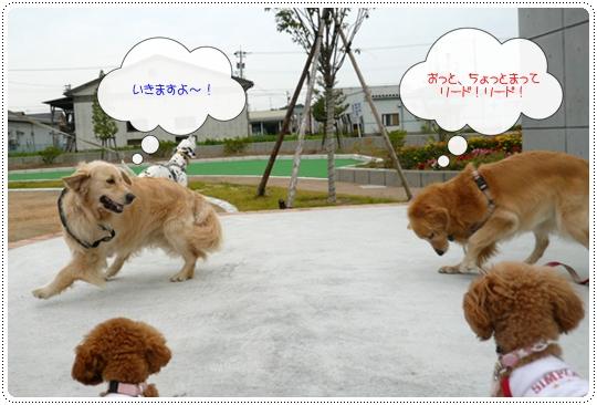 10,7お散歩5