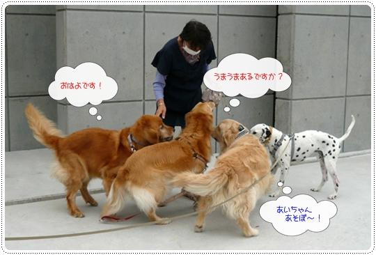 10,7お散歩2