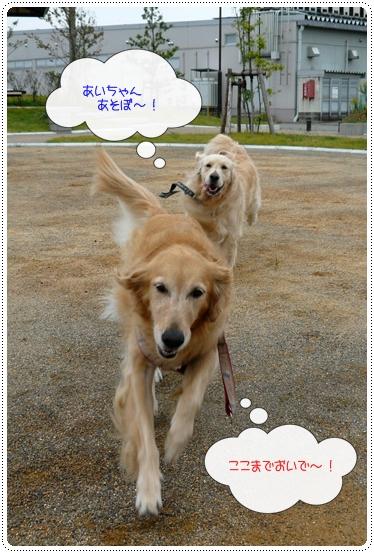 10,7お散歩3