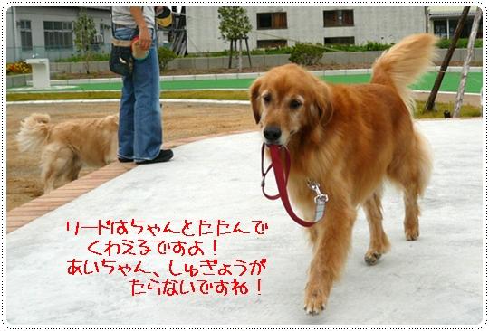 10,7お散歩8