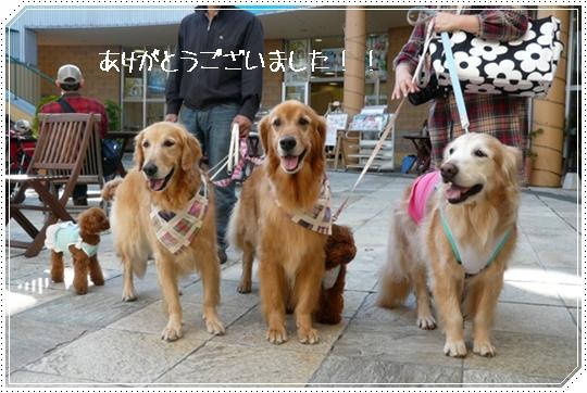 10,15軽井沢8