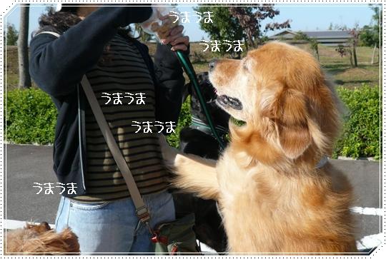 10,18お散歩2