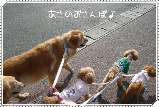 10,22お散歩1