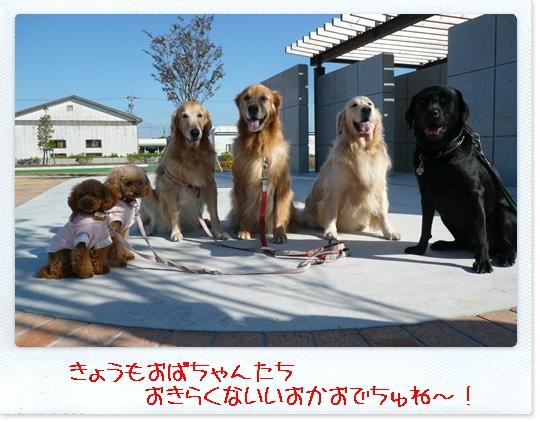 10,23お散歩6