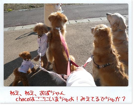 10,23お散歩4