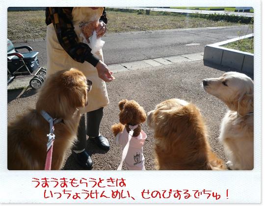 10,23お散歩5