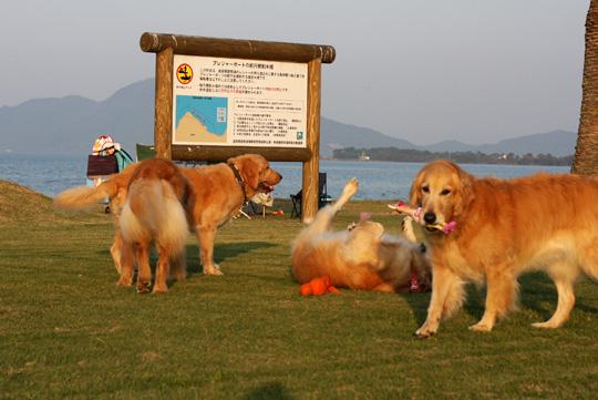 10,30琵琶湖18