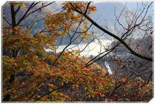 11,7白山スーパー林道18