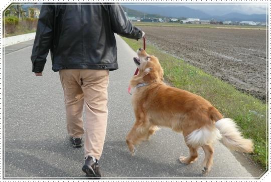 11,15お散歩8