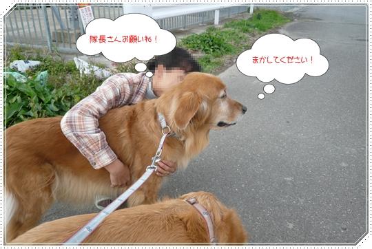 11,21お散歩5