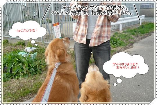 11,21お散歩3