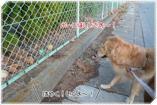 11,25お散歩15