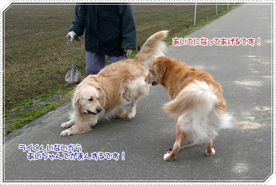 12,13お散歩5