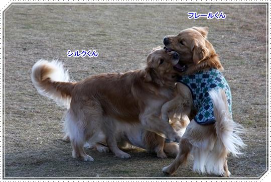 12,18愛知オフ会8