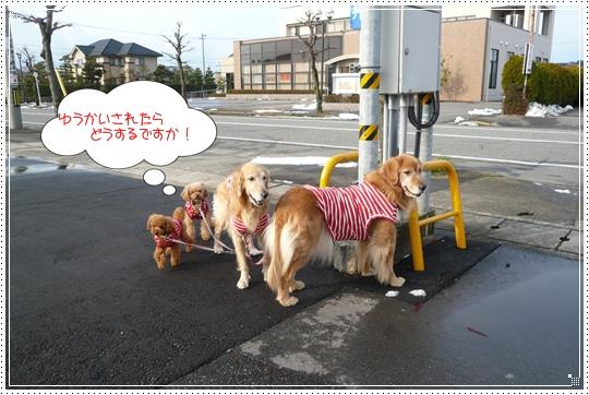 12,23お散歩7