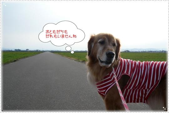 12,23お散歩3