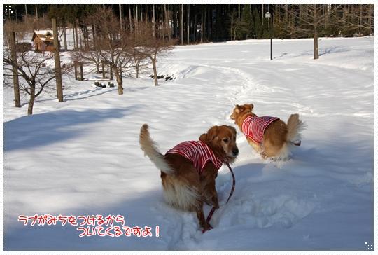 2010,1,4雪遊び3