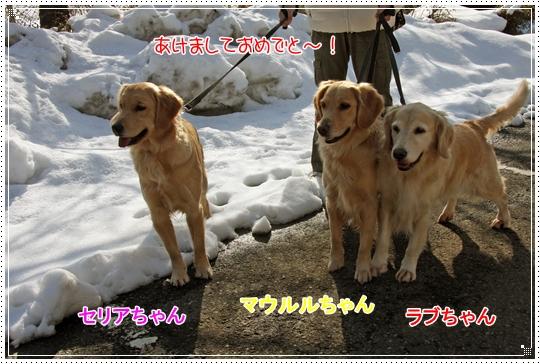 2010,1,4雪遊び2