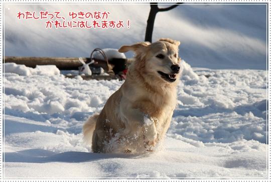 2010,1,4雪遊び13