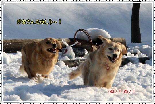 2010,1,4雪遊び12