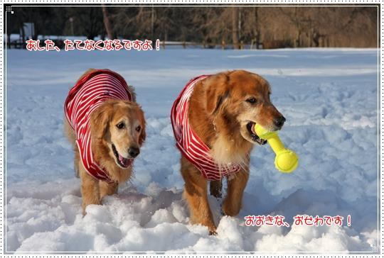 2010,1,4雪遊び11