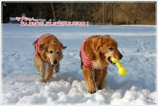 2010,1,4雪遊び10
