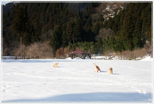 2010,1,4雪遊び14