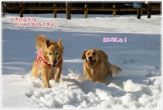 2010,1,4雪遊び6