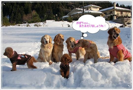 2010,1,4雪遊び18
