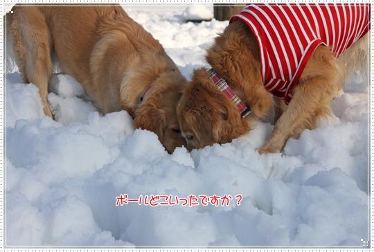 2010,1,4雪遊び15