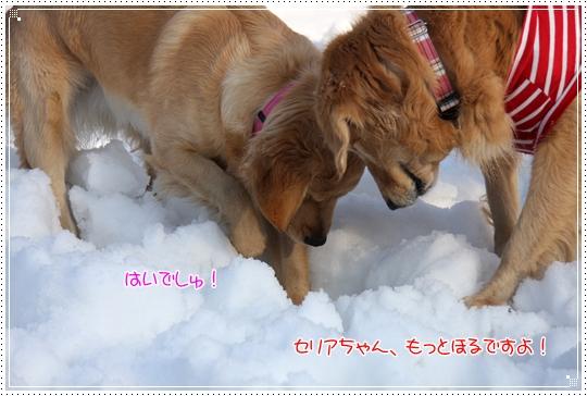 2010,1,4雪遊び16