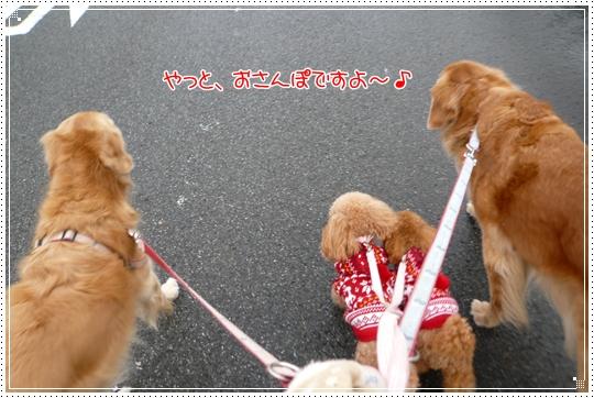 2010,1,9お散歩6
