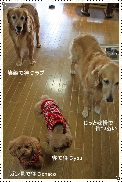 2010,1,9お散歩5
