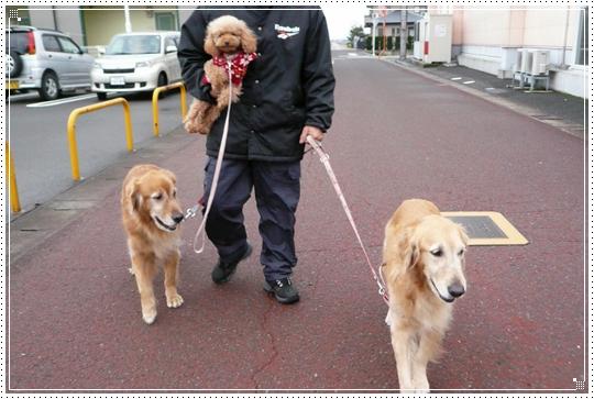 2010,1,10お散歩12