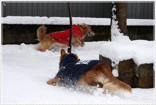 2010,1,14雪遊び3