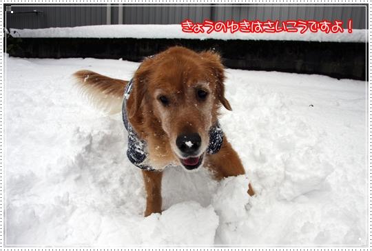 2010,1,14雪遊び7