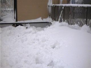 0110雪5