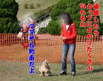 20091012nohara.jpg