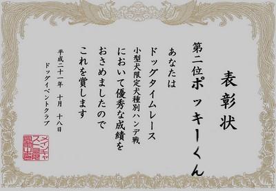 20091018kogatapocky3.jpg
