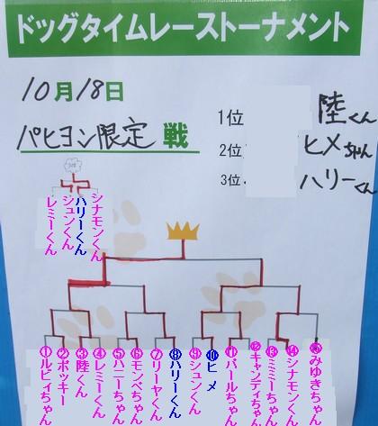 20091018papi.jpg