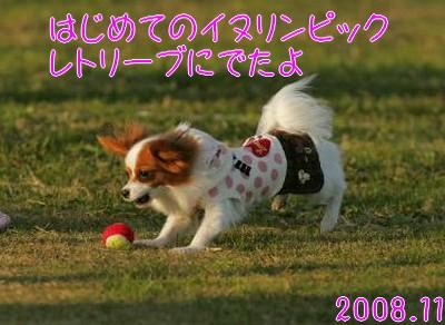 2009103mimi16.jpg