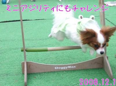 2009103mimi17.jpg