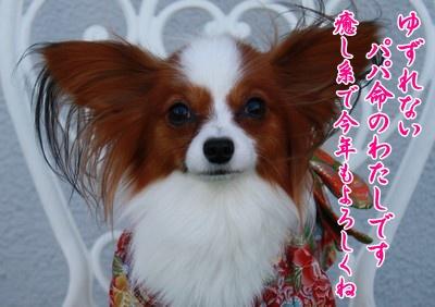 2009103mimi24.jpg