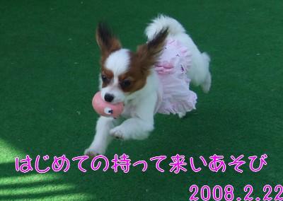 2009103mimi5.jpg