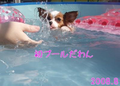 2009103mimi9.jpg