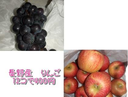 20091179.jpg