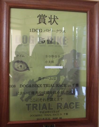 20091212kotaroukun2.jpg
